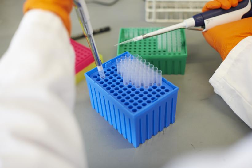 A lab technician pipetting samples in a GOSH lab