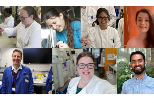 Healthcare scientists at GOSH